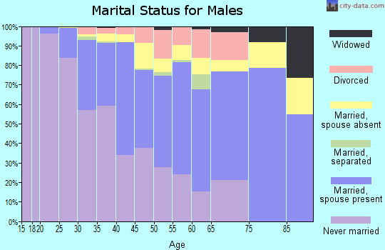 Zip code 22201 marital status for males