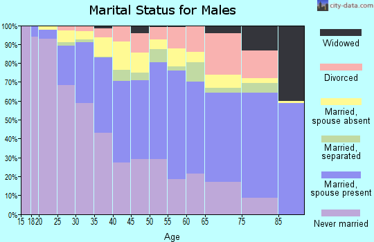 Zip code 22204 marital status for males
