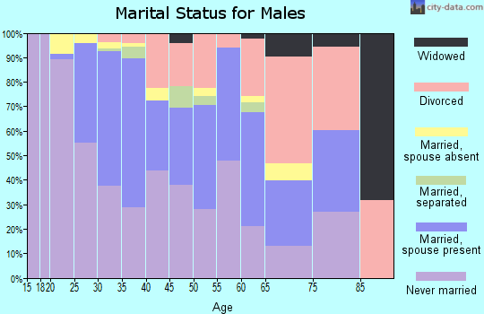 Zip code 22206 marital status for males