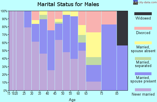 Zip code 22209 marital status for males