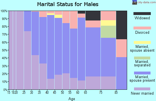 Zip code 22301 marital status for males
