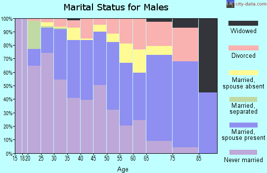 Zip code 22303 marital status for males
