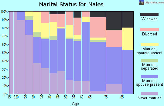 Zip code 22311 marital status for males