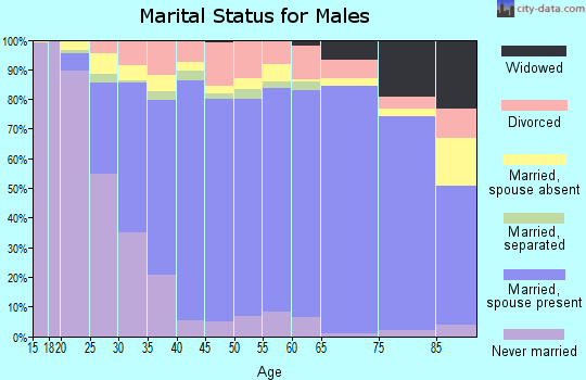 Zip code 22407 marital status for males