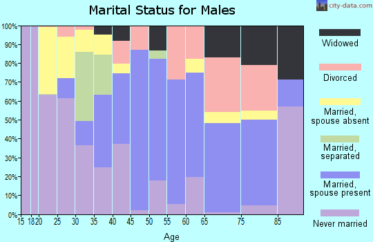 Zip code 22427 marital status for males