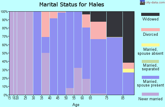 Zip code 22482 marital status for males