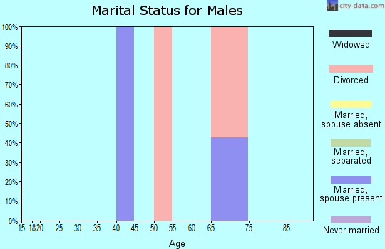 Zip code 22529 marital status for males