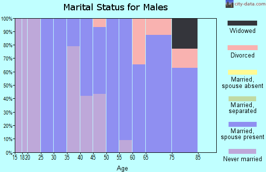 Zip code 22642 marital status for males