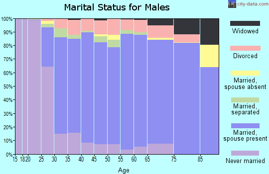 Zip code 23112 marital status for males