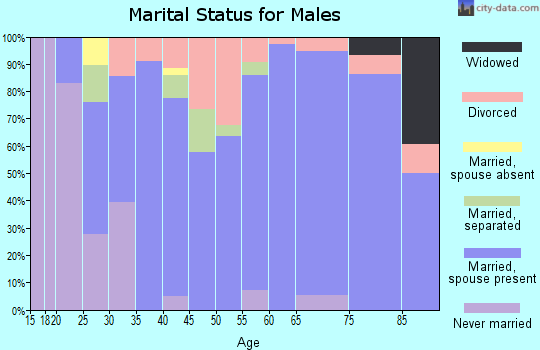 Zip code 23181 marital status for males