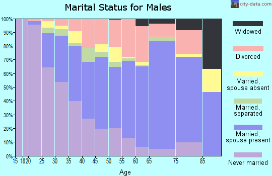 Zip code 23228 marital status for males