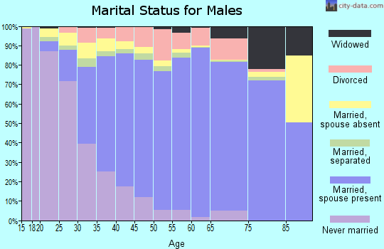 Zip code 23322 marital status for males
