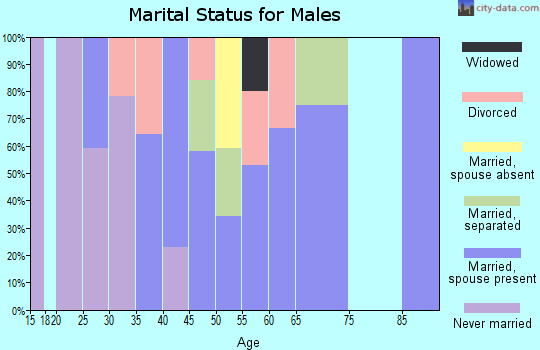 Zip code 23415 marital status for males