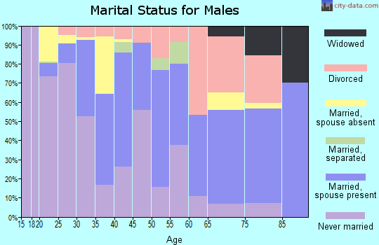 Zip code 23507 marital status for males