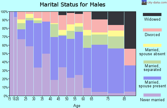 Zip code 23509 marital status for males
