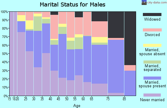 Zip code 23513 marital status for males
