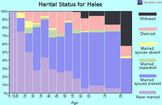 Zip code 23518 marital status for males