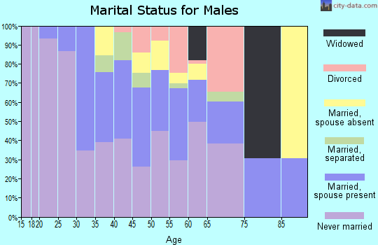Zip code 23523 marital status for males