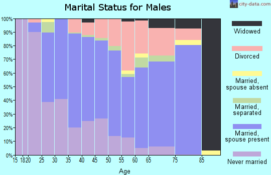 Zip code 23601 marital status for males
