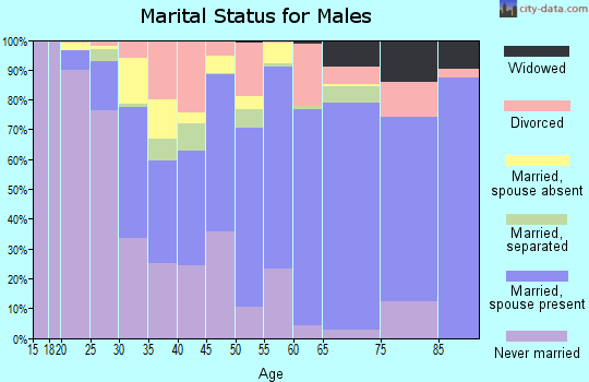 Zip code 23606 marital status for males