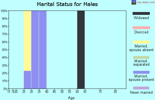Zip code 23691 marital status for males