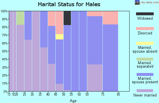 Zip code 23898 marital status for males