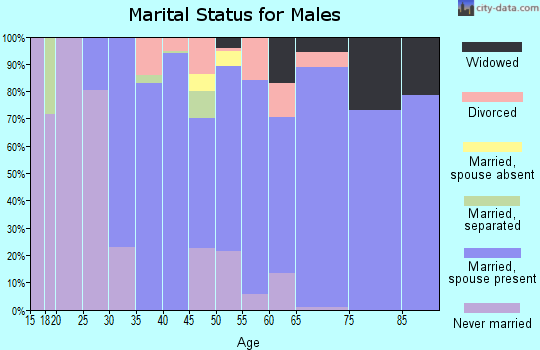 Zip code 24065 marital status for males