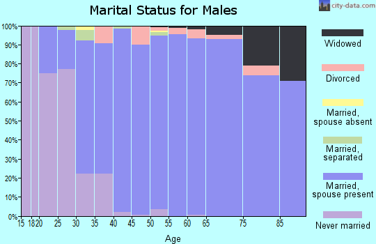 Zip code 24090 marital status for males