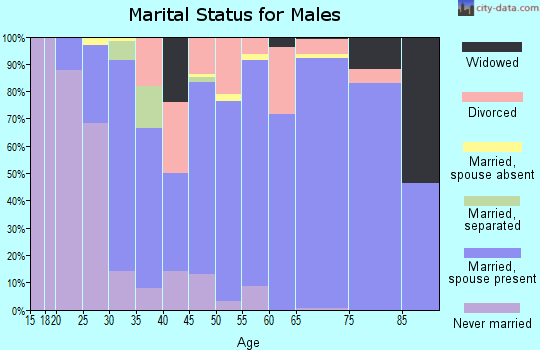 Zip code 24121 marital status for males
