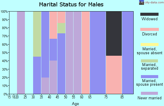 Zip code 24150 marital status for males
