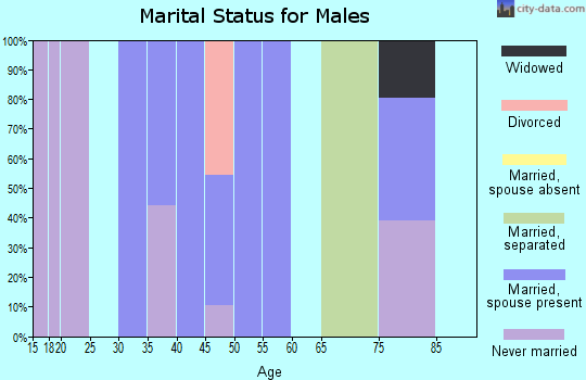 Zip code 24220 marital status for males