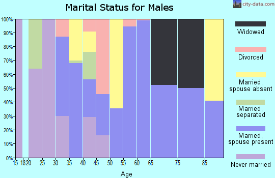Zip code 24225 marital status for males