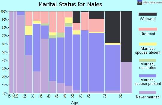Zip code 24228 marital status for males