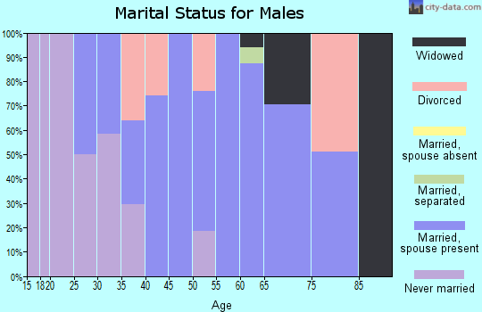 Zip code 24380 marital status for males