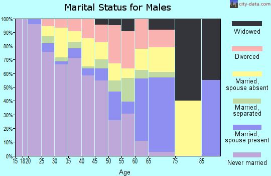 Zip code 24430 marital status for males