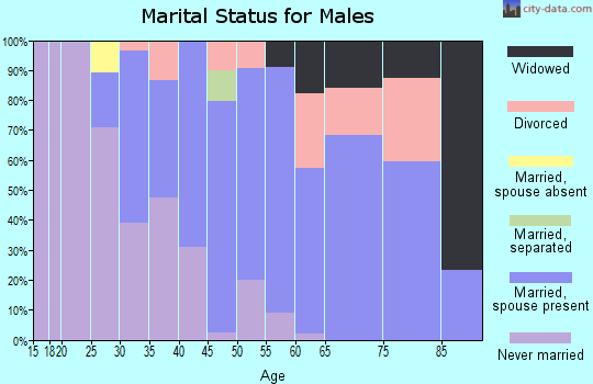 Zip code 24538 marital status for males