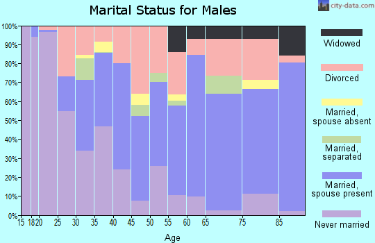 Zip code 24592 marital status for males