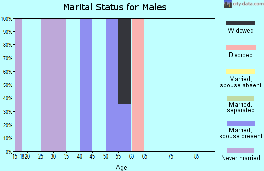 Zip code 24731 marital status for males