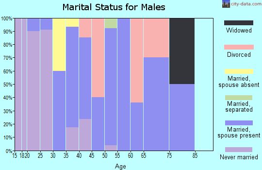 Zip code 24808 marital status for males
