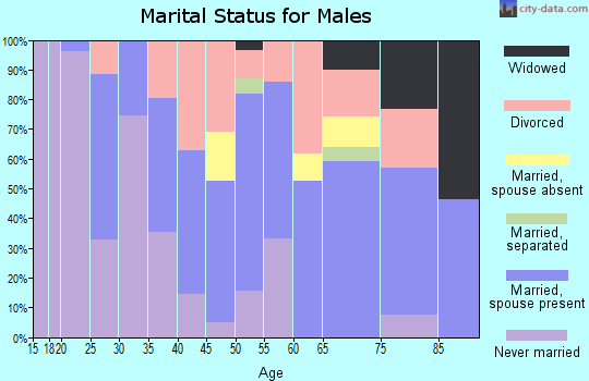 Zip code 24910 marital status for males