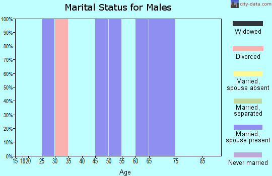 Zip code 25005 marital status for males