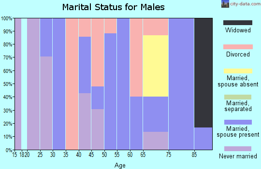 Zip code 25102 marital status for males