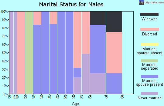 Zip code 25106 marital status for males