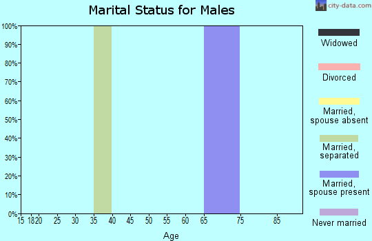 Zip code 25126 marital status for males