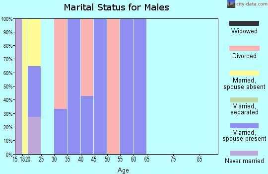 Zip code 25169 marital status for males