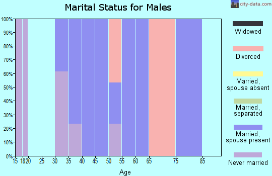 Zip code 25259 marital status for males