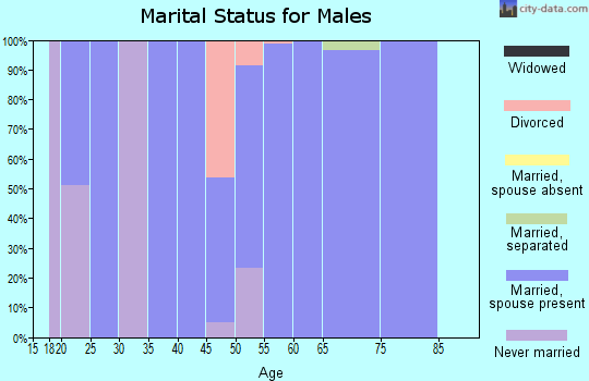 Zip code 25270 marital status for males
