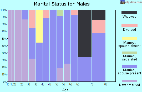 Zip code 25275 marital status for males