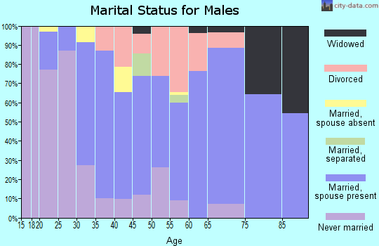 Zip code 25313 marital status for males