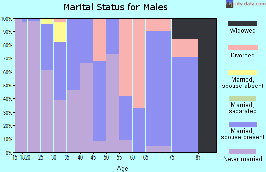 Zip code 25438 marital status for males